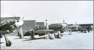A line-up of Veltros of 1o Stormo (79a Squdriglia) at Catania-Sigonella airfield.